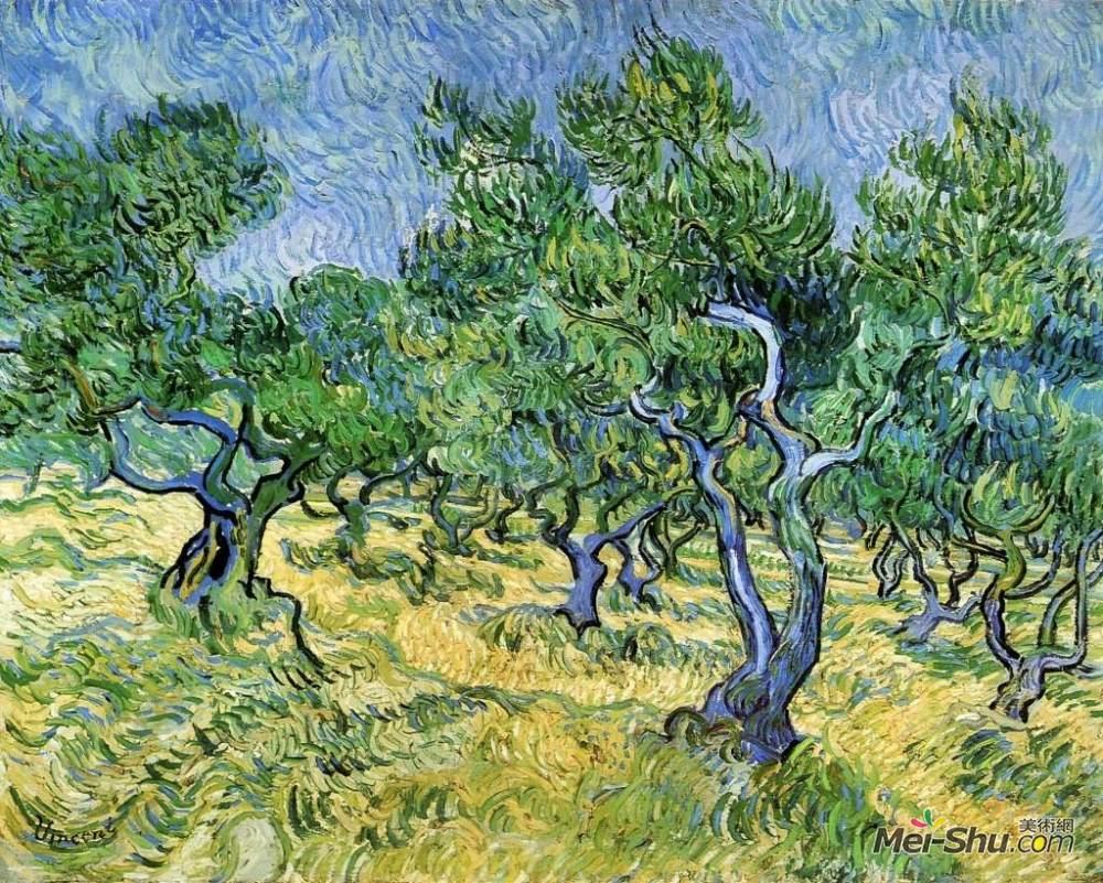 梵高作品《橄榄树》