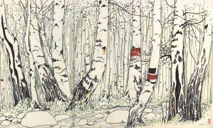 画家另幅〈白桦林〉,已改为状写树身一截,未及全株
